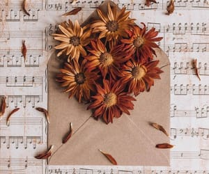 carta, flores, and musica image