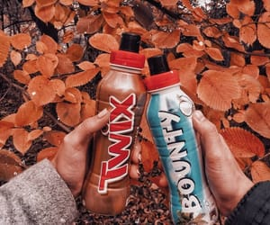autumn, shakes, and bounty image