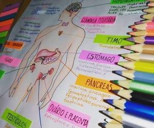 color, apuntes, and escuela image