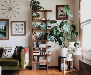 books, goals, and green image