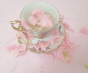 pink, aesthetic, and petals image