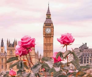 london, city, and roses image