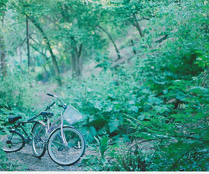 bike, green, and soul . image