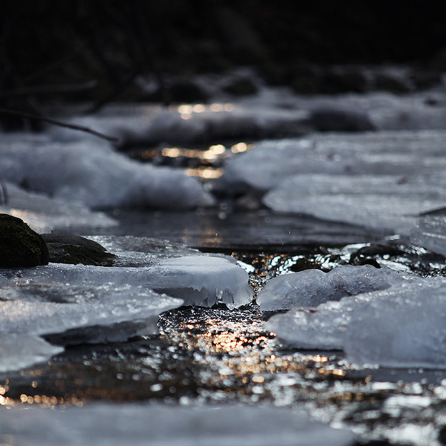 ice, nature, and snow image