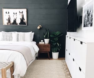 bedroom decor, plants, and pinterest image