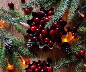 christmas, cranberries, and seasons image