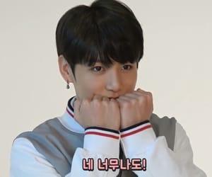 bts, lq, and jeon jungkook image
