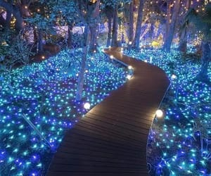 blue and lights image