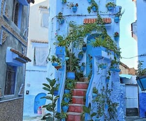 blue, plants, and architecture image