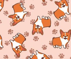corgi, dog, and wallpaper image