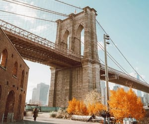 autumn, brooklyn bridge, and photography image