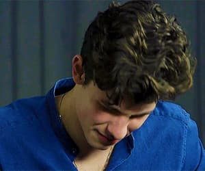 gif, gifs, and shawn mendes image