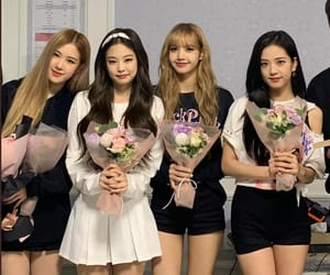 girl group, k-pop, and rose image