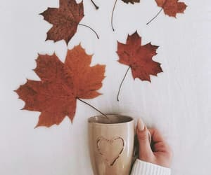 autumn, mug, and tea image