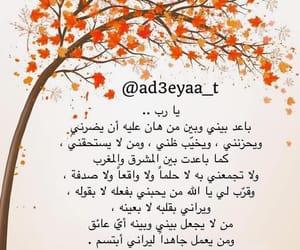 arabic, صلاة, and salat image