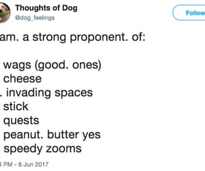 cheese, wags, and peanut butter image