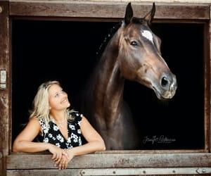 horses, equestrian, and bilderrahmen image