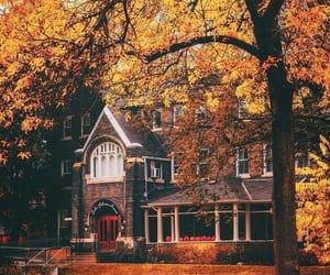 autumn, nature, and exterior image