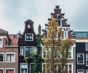 amsterdam, cities, and fall image
