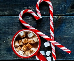 winter, christmas, and candy cane image