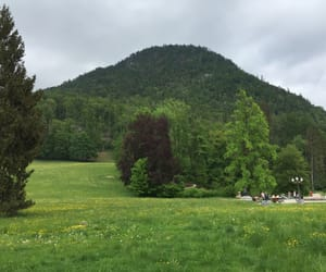 austria, mountain, and spring image