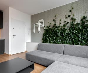 design, indoor, and interior image