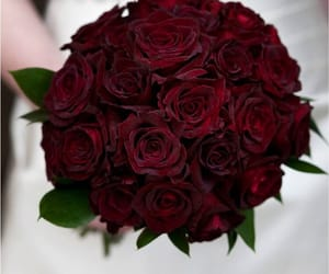 bride, dark red, and flowers image