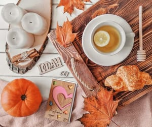 autumn, christmas, and coffee image