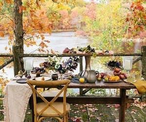 autumn, foliage, and autumn leaves image