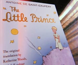 books and the little prince image