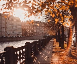 autumn, city, and leaves image