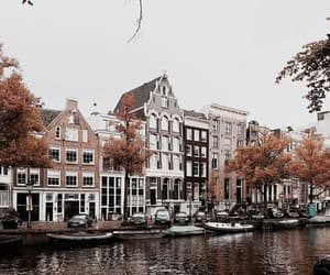 photography, amsterdam, and autumn image