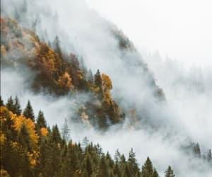 autumn, foggy, and november image