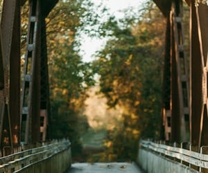 autumn, autumn colors, and bridge image