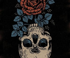 wallpaper, rose, and skull image
