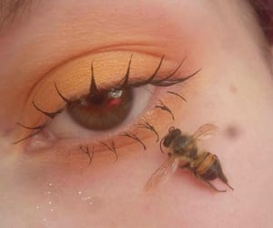 bee, aesthetic, and eyes image