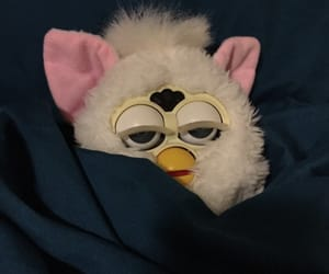 funny, meme, and furby image