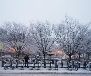 christmas, snow storm, and new york image