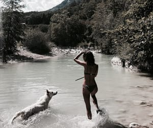 dog, girl, and summer image