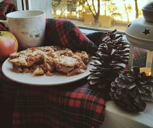 amateur, apples, and november image