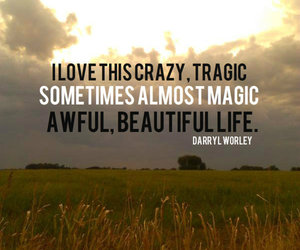 beautiful, hay, and quotes on life image
