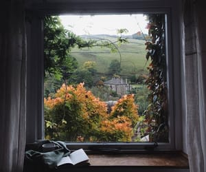 book, autumn, and nature image