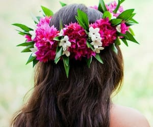 hair, tropical, and flowers image