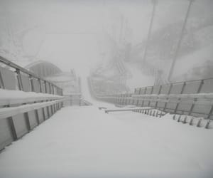 pale and snow image