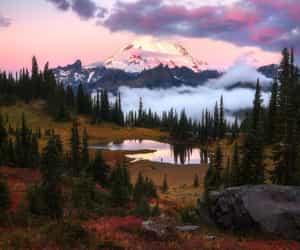 beautiful world image