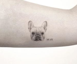 black, ink, and pet image