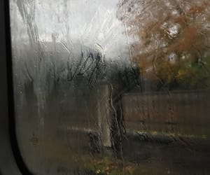 autumn, glass, and nature image