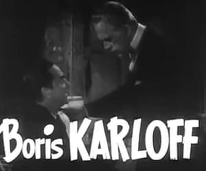 Bela Lugosi, black friday, and Boris Karloff image