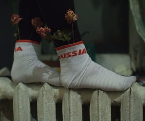 russia and legs image