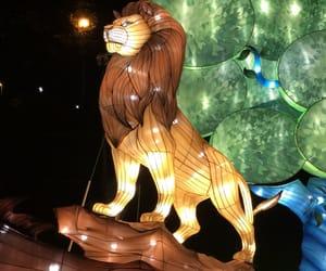 animals, king, and light image